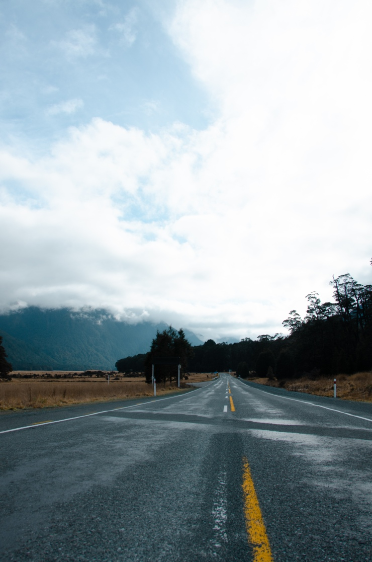 Empty road in Kiwi countryside