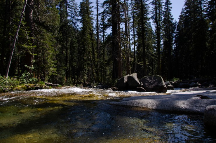 A stream in Yosemite National Park, USA