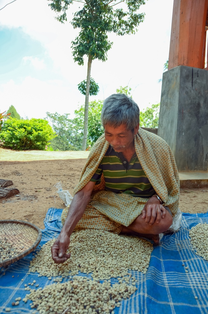 A coffee farmer displays his beans while he selects them in Tana Toraja