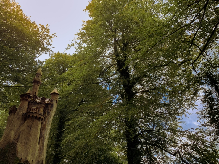 Miniature castle carved from a dead tree trunk in Painswick Rococo Gardens. The Castle is in the bottom left corner with the trees taking up the rest of the frame letting the sun in.